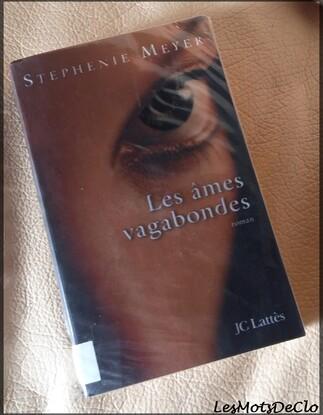 Chronique n°85 - Les âmes vagabondes