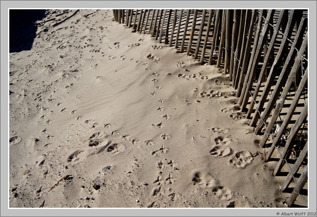 De sable en port...