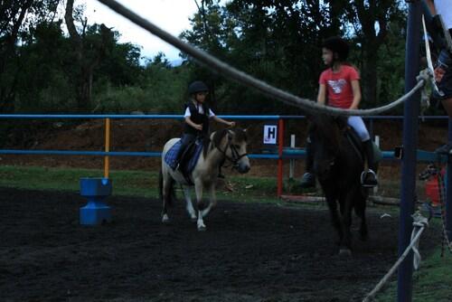 le travail de macatia pour qu'il devienne un vrai poney!