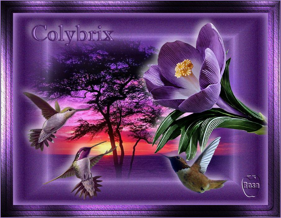 COLYBRIX