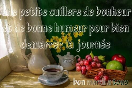 Bon mardi  les ami(e)s