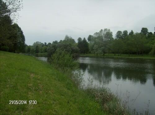 Les cygnes et le lac Parisot