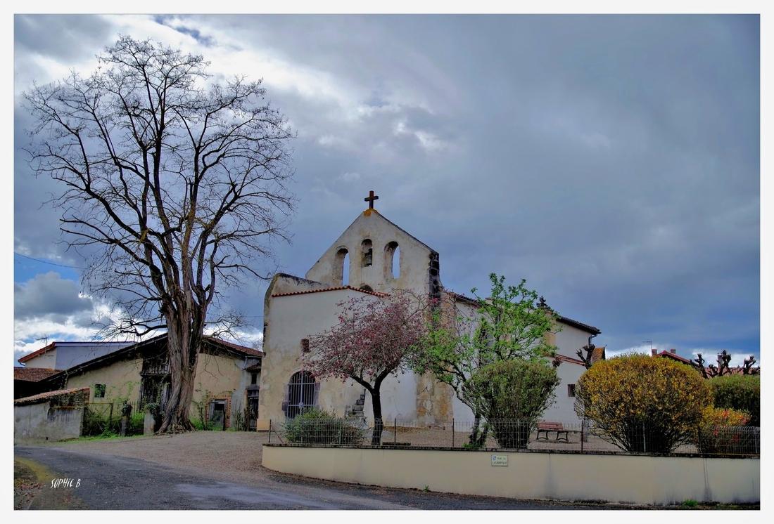 La chapelle et le vieil arbre.