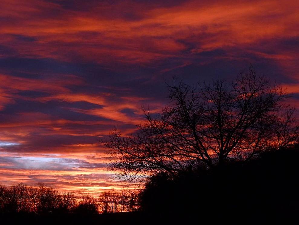 Ciel-lever-du-jour-fevrier-2010.jpg