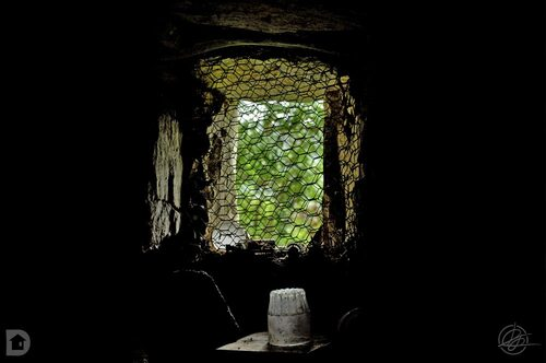 Lucarne de cave