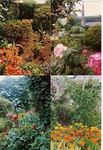fleurs de jardin pour maman