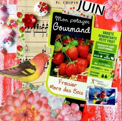 Challenge JUIN 2021 - Fraises - oiseaux - musique Chall555