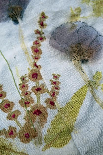 Sur le bord de ma table... fleurs des prés