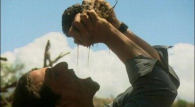 boire les fluides d'une crotte d'éléphant, ou utiliser un purificateur d'eau?