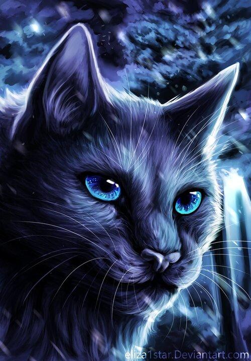Étoile Bleue - Bluestar