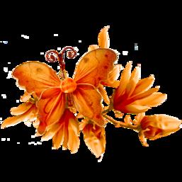 A personnaliser automne