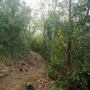 Et le sentier qui continue à monter - Photo : Elise