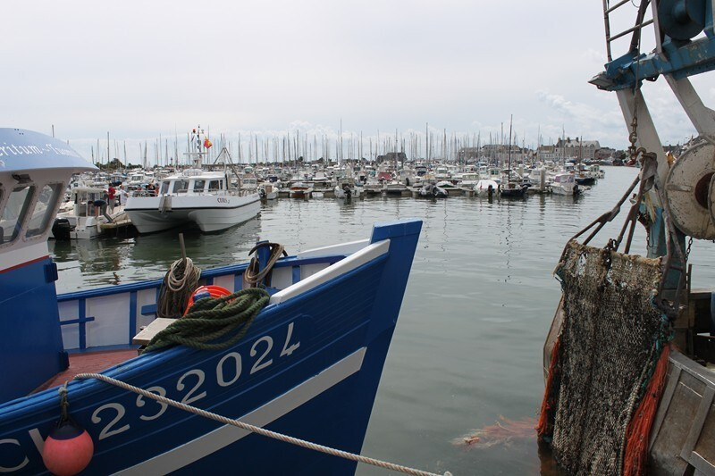2 St Vaast la Hougue (5)