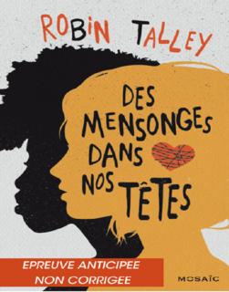 Des mensonges dans nos têtes (Robin Talley)