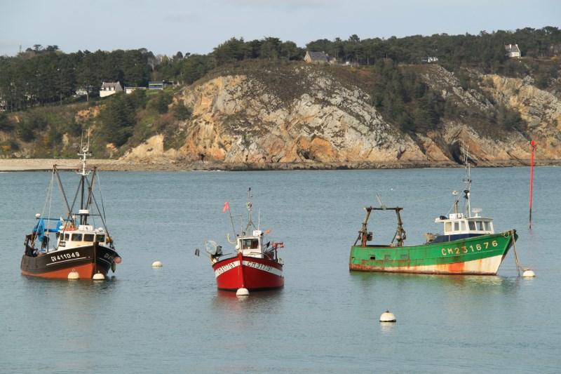 842 - Entre hameaux et port en Presqu'île de Crozon (29)