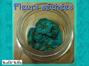 fleurs-sechees1.gif