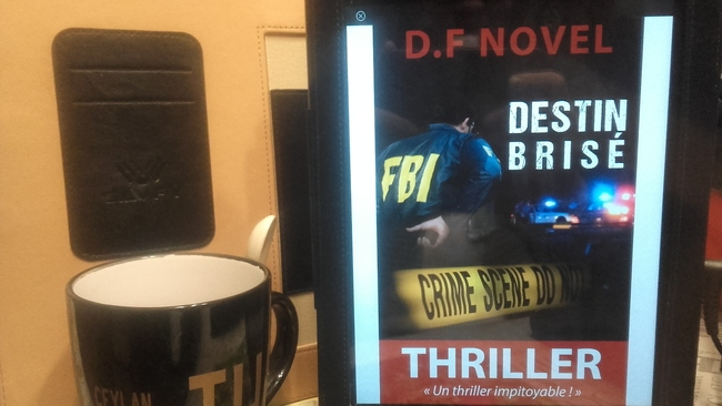 Destin brisé (D.F Novel)