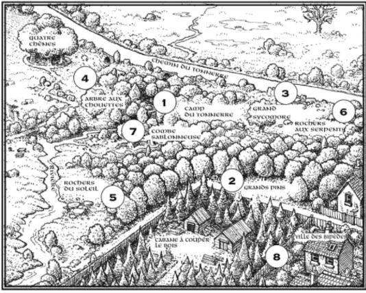 Le territoire du Clan du Tonnerre dans la forêt