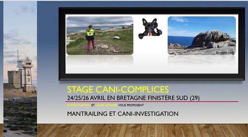 stage Cani-complices en Bretagne  AVRIL 2021