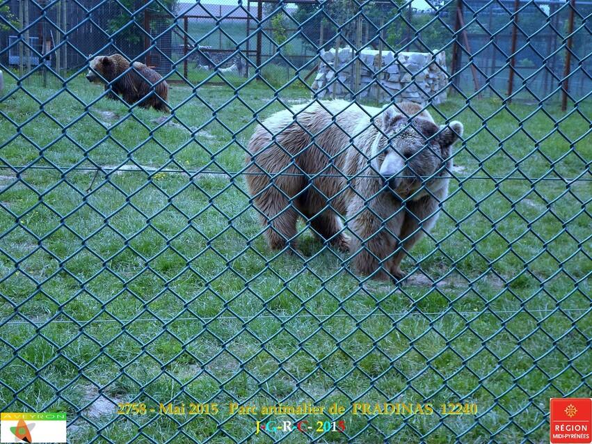 Parc animalier de PRADINAS 12   24-05-2015    2/7  D 02/04/2016