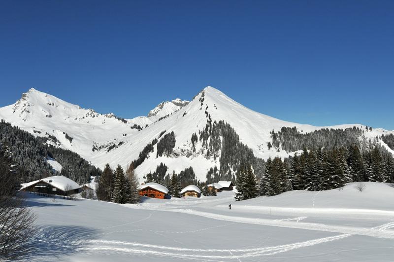 Balade d'hiver : le Praz-de-Lys (1)
