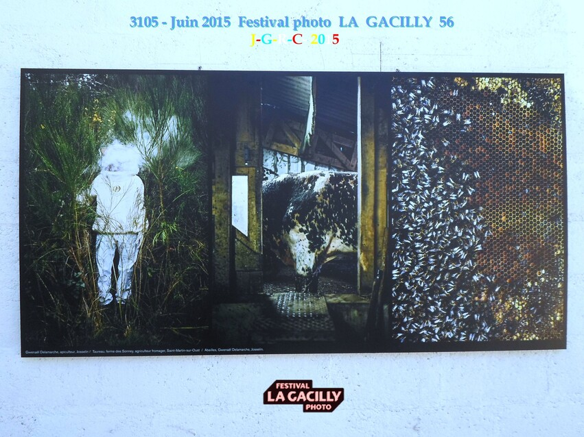 EXPO PHOTO  2015  N  7  PROD. ALIM. BRETAGNE  LA GACILLY 56  2/3  D  24/08/2015