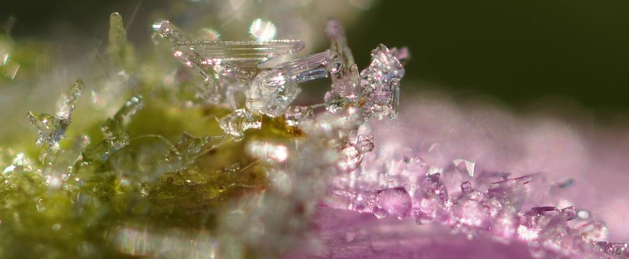 Parrure de cristaux dans son matin d' écrin