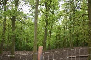 Parc animalier Bouillon 2013 enclos 276