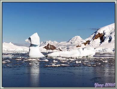 Iceberg à forme animale, une véritable curiosité de la nature - Skontorp Cove - Paradise Bay - Péninsule Antarctique
