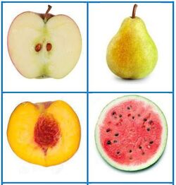 AIM: cartes fruits-fruits coupés