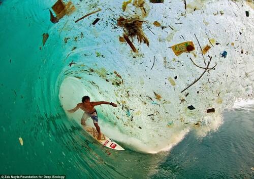 Notre planète que faire ?