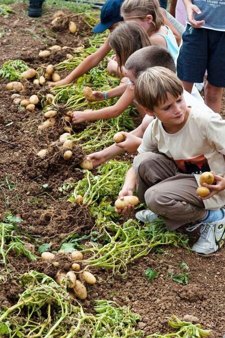 Cette commune a fondé une régie agricole 100 % bio