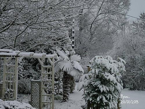 neige-20-janv-2013--3-.jpg