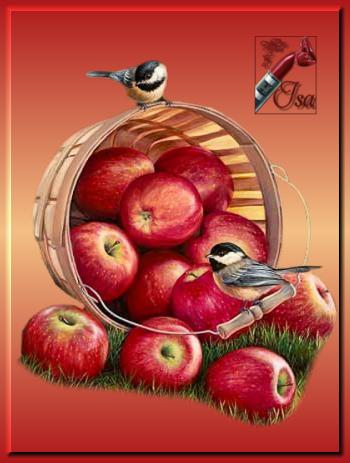 TV0023 - Tube panier de pommes