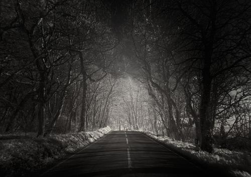 La route, suite