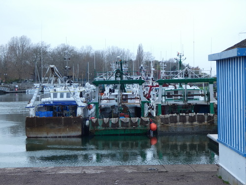 Port de pêche