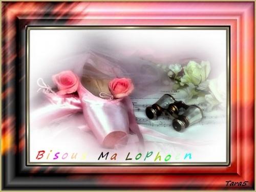 k'ado pour Lophoen