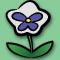 Liste des Fleurs