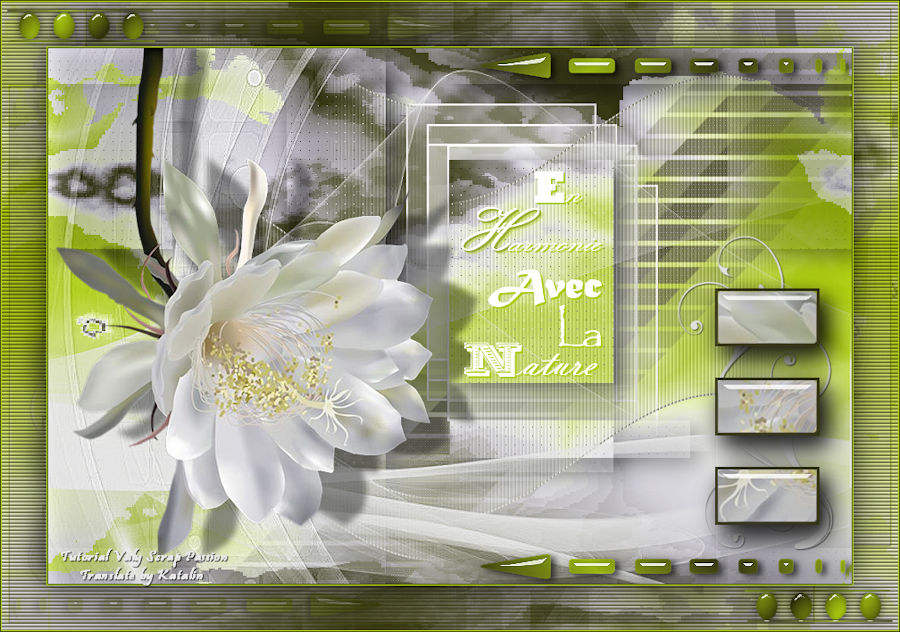 Tutorial Valy Scrap Passion ~ Bloemen