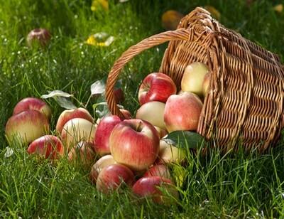 jolie pomme .....