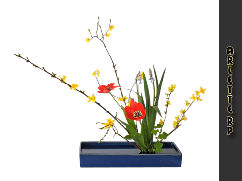 Tubs déco-floral 4