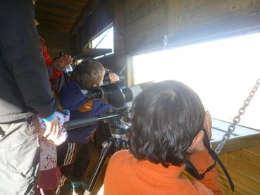 Connaissance des zones humides et oiseaux d'eau (Puydarrieux)