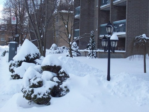 hiver2.jpg