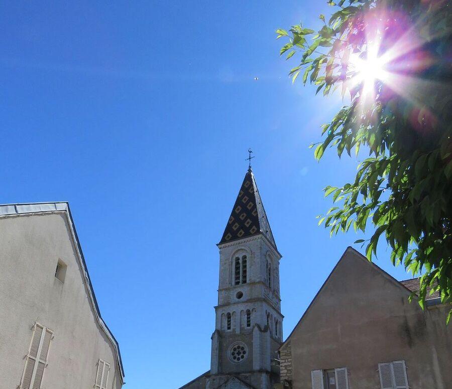 Nuits Saint Georges (21