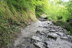 sentier d'Holzarte -11-