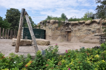 zoo allemagne2 326