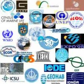 Création, composition, et fonction des organes des organisations Internationales
