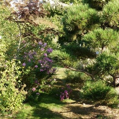 Retour sur le Troc Plantes 2018 au Jardin de Valérie...