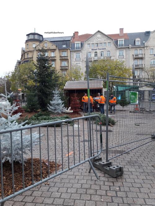 Sapin devant la gare de Metz...