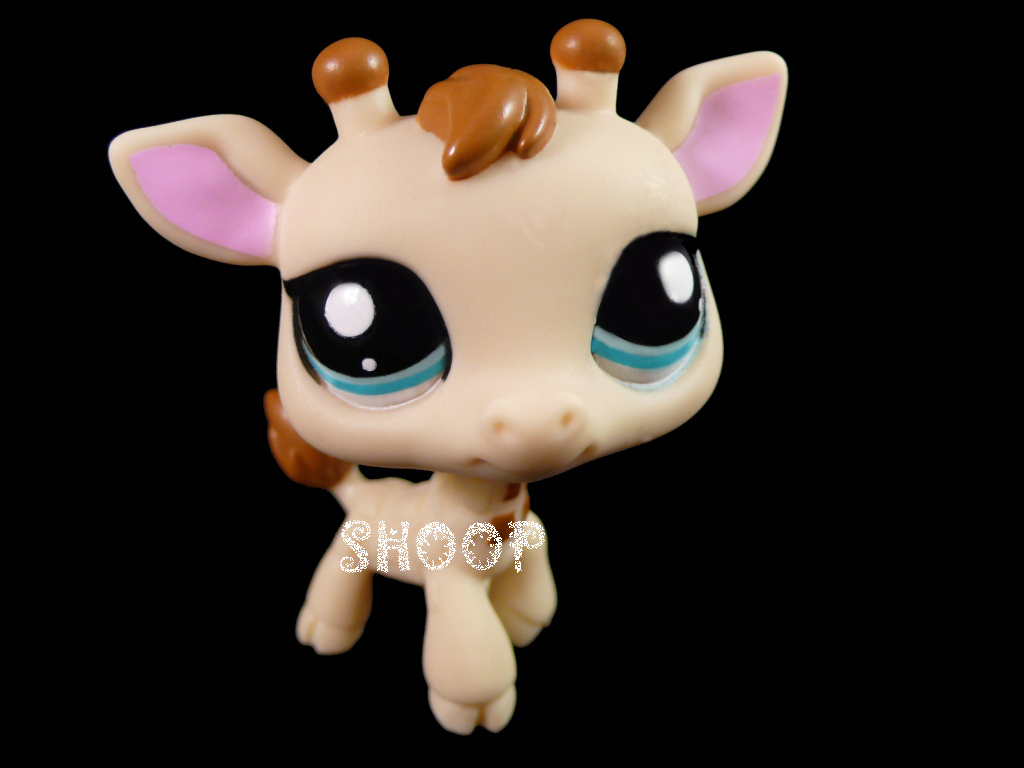 LPS 2447